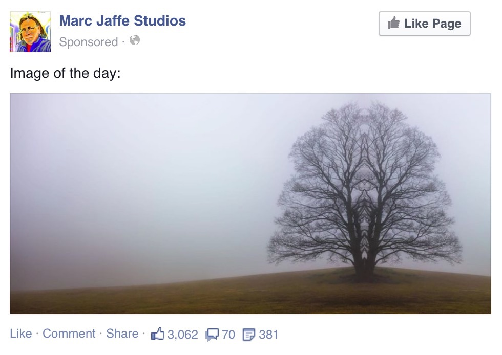 magictree-post